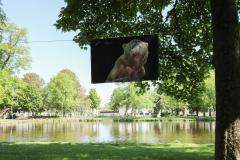 Aufhaengen-Bilder-Tugba-Simsek-Holzminden.-Umhaengen-Mai-Juni-22-2