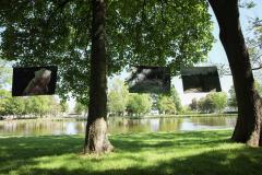 Aufhaengen-Bilder-Tugba-Simsek-Holzminden.-Umhaengen-Mai-Juni-22-3